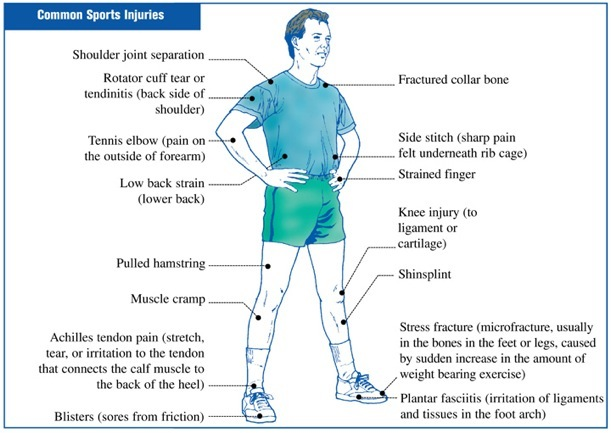 Strains In Sport. (See Common Sports Injuries